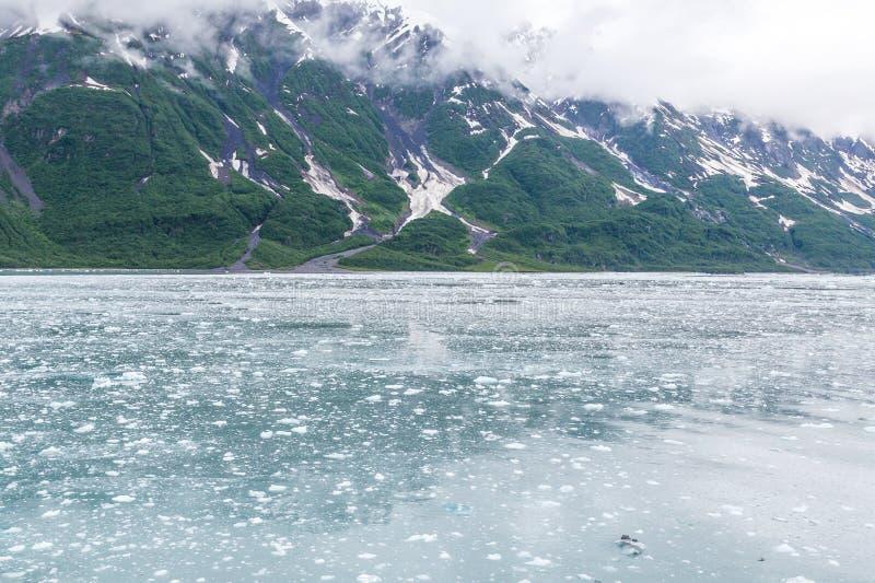 Download Glace Flottant Dans La Manche D'Alaska Image stock - Image du climate, ciel: 76076661
