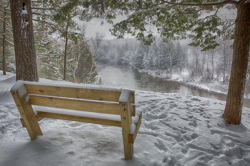 Download Glace, Neige, Arbre, Scène De Rivière D'hiver Image stock - Image du arbre, michigan: 87705903