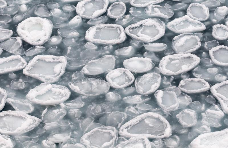 Glace récemment formée de crêpe, Antarctique photographie stock
