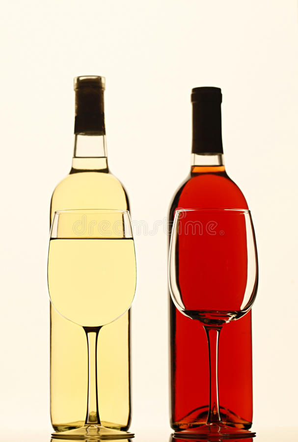 Glace vide et pleins glas du vin blanc image libre de droits
