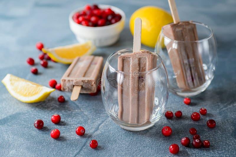 Glaces à l'eau de chocolat avec une canneberge images libres de droits
