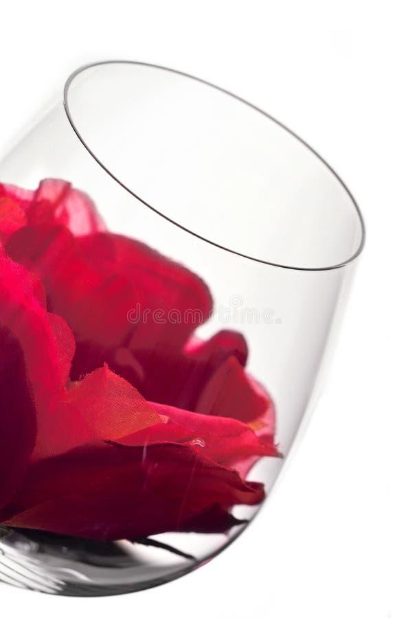 Glaces et fleur de vin images stock