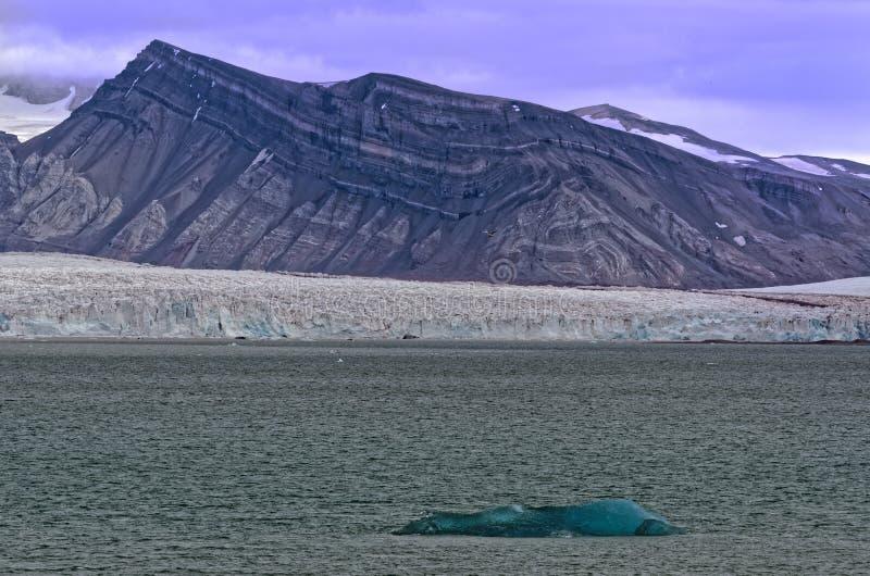 Glaciär i Svalbard arkivbilder