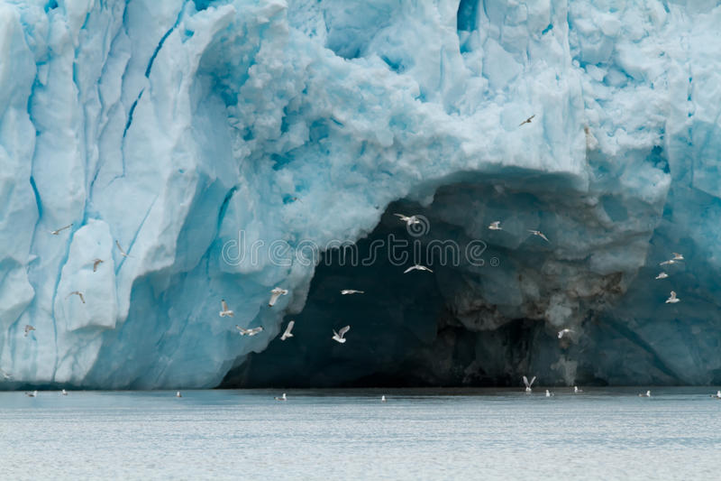 Glaciär i svalbarden royaltyfri bild