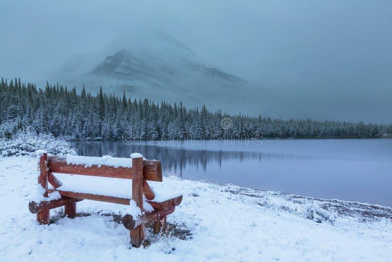Glaciären parkerar i vinter royaltyfri foto