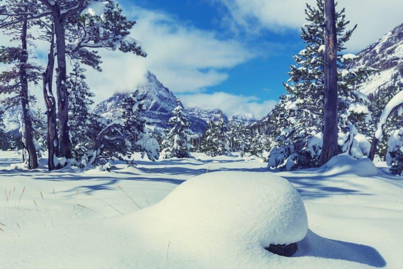 Download Glaciären Parkerar I Vinter Arkivfoto - Bild av montana, fotvandra: 76703840