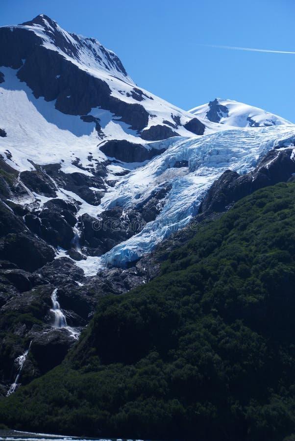 Glaciären som ner kommer på berget med, sörjer träd i forground nära Whitier Alaska royaltyfri foto
