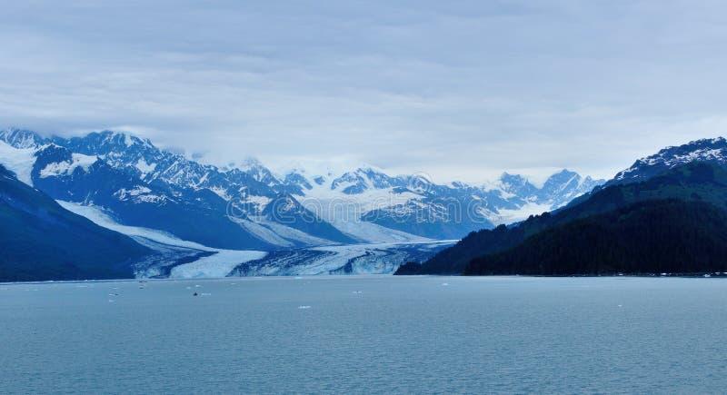 Glaciärer i högskolafjorden i Alaska fotografering för bildbyråer