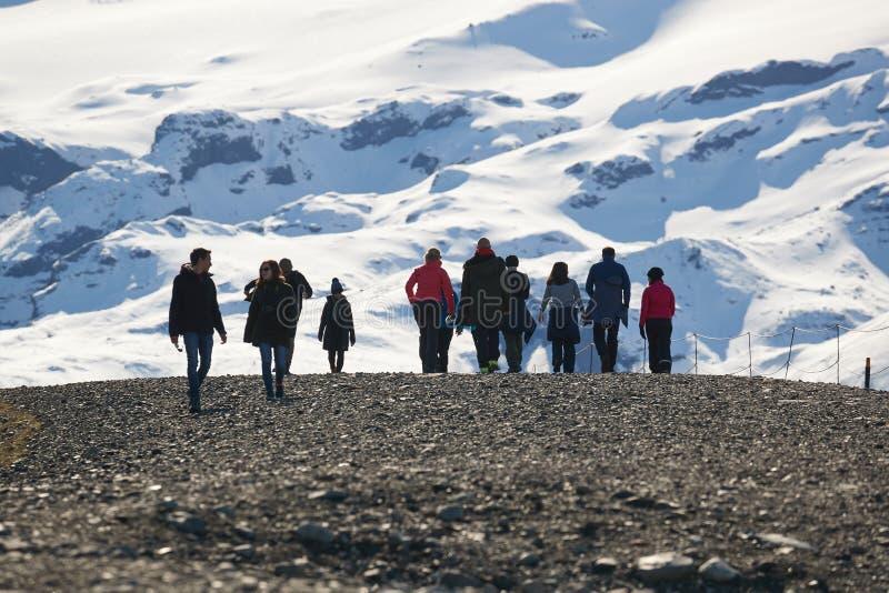 Glaciärer i Island royaltyfri foto