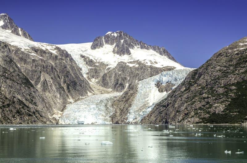 Glaciärfjärd med klar blå himmel royaltyfri fotografi