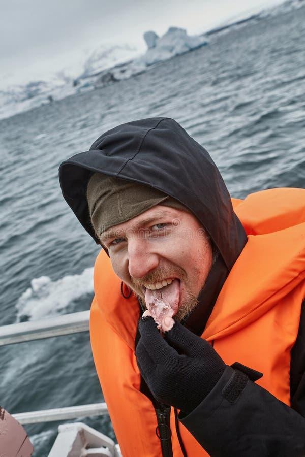 Glaciärlagun i Island som smakar isstycken royaltyfri fotografi