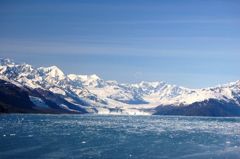 Glaciar de Harvard imagenes de archivo