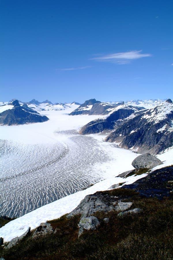 Glaciar de Mendenhall, Alaska fotografía de archivo