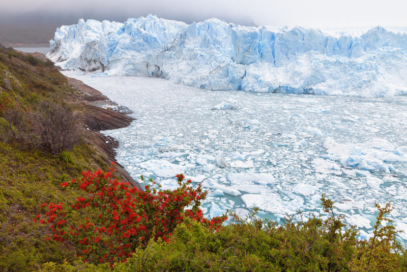 Glaciar de Perito Moreno, EL Calafate, la Argentina imagen de archivo libre de regalías