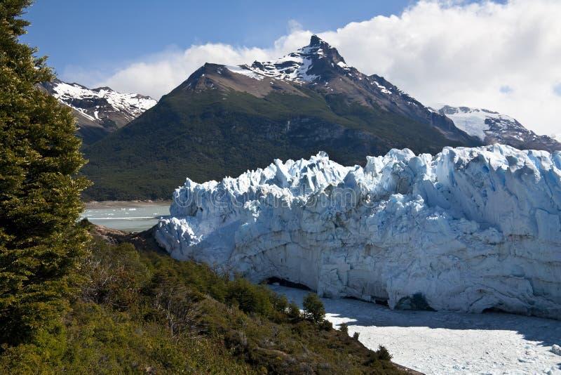 Glaciar de Perito Moreno - la Argentina imagen de archivo libre de regalías