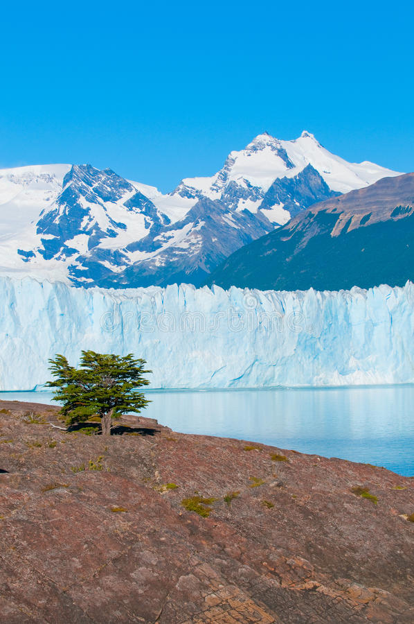 Glaciar de Perito Moreno, Patagonia, la Argentina imagen de archivo libre de regalías