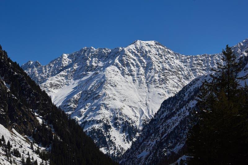 Glaciar de Stubai del panorama fotos de archivo