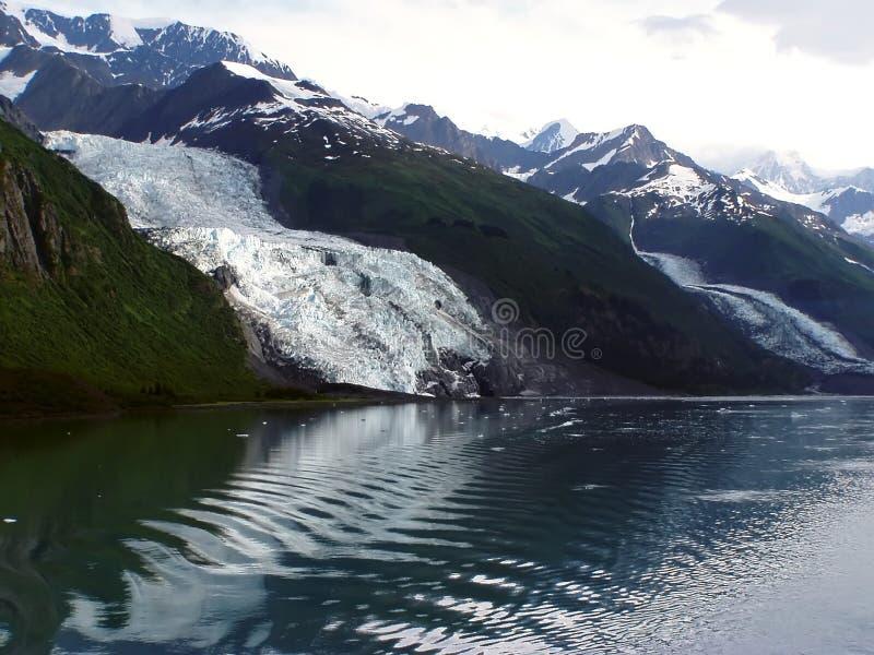 Glaciar de Vassar - fiordo de la universidad, Alaska foto de archivo