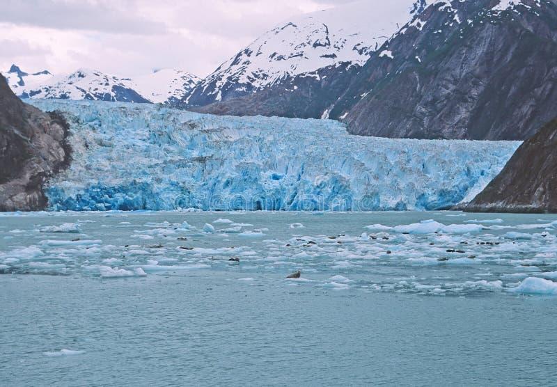Glaciar en el interruptor Alaska fotos de archivo libres de regalías