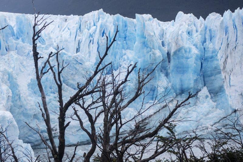 glaciar moreno perito royaltyfri fotografi