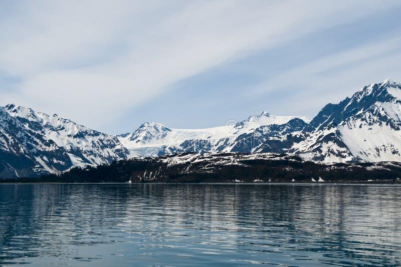 Glaciares en la costa costa foto de archivo libre de regalías
