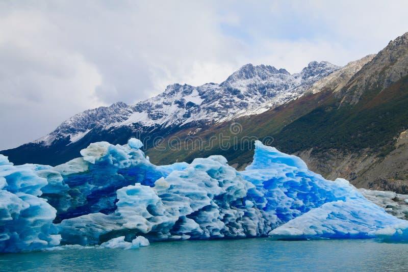 glaciareslos-parque arkivbilder