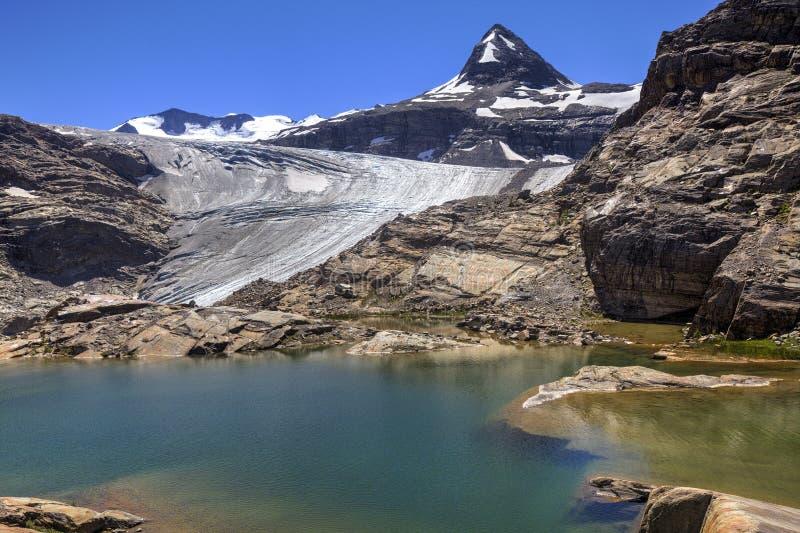 Glacier湖在落矶山 免版税图库摄影