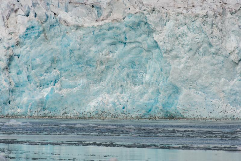 Gacier calving in Svalbard close up. Arctic landscape in Svalbard with glacier in summer time royalty free stock photos