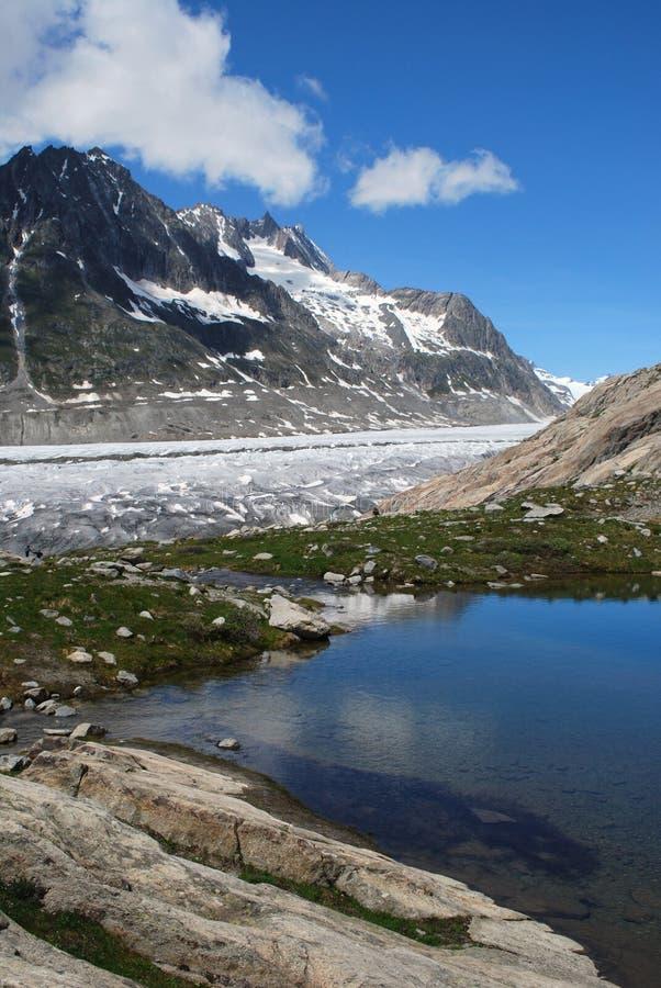 Glacier d'Aletsch avec le lac photos libres de droits