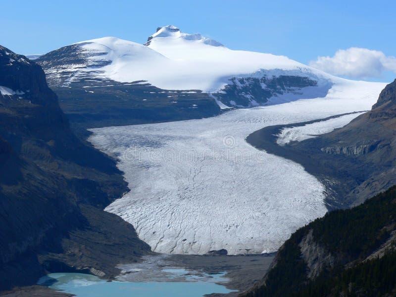 Glacier de Saskatchewan photo libre de droits