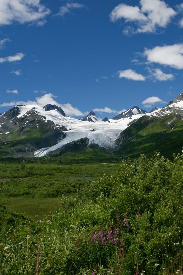 Glacier de Worthington photo stock