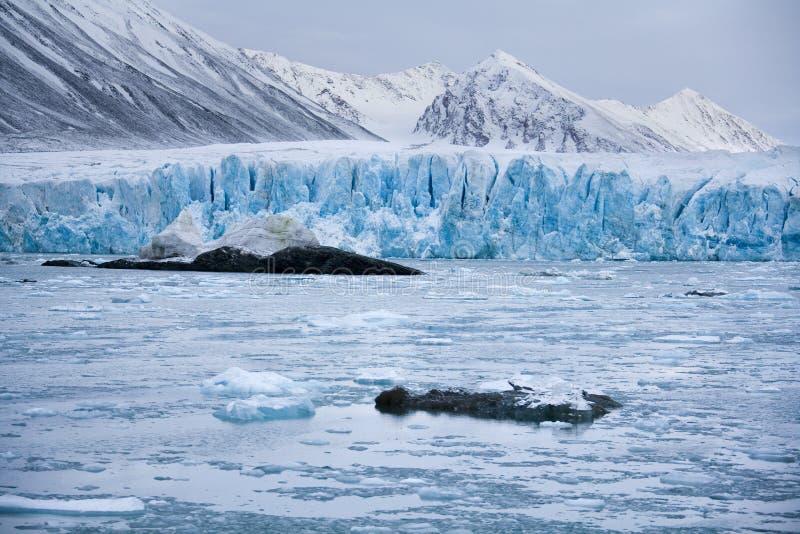 Glacier du Monaco - îles du Svalbard (le Spitzberg) photographie stock
