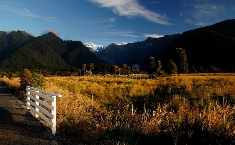 Glacier Fox. Parc national de Westland. NZ images libres de droits