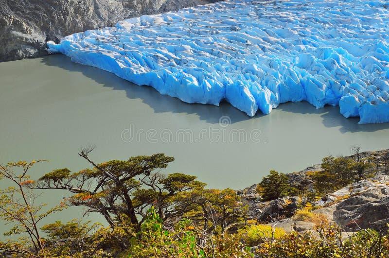 Glacier gris Stationnement national de Torres del Paine image stock
