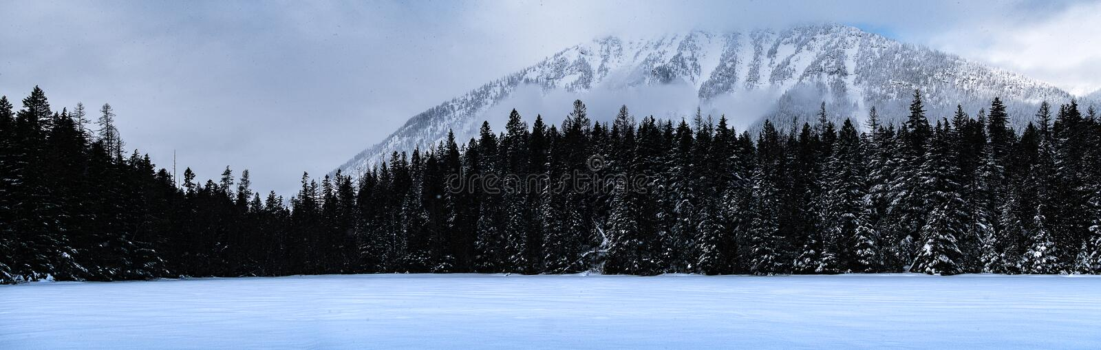 Glacier National Park Snowing in Winter royalty free stock photos