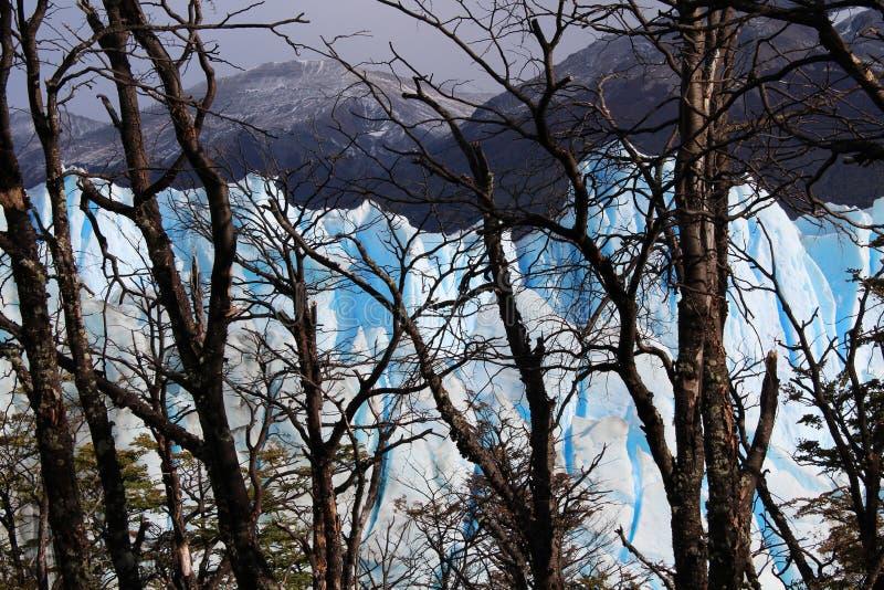 The glacier Perito Moreno. Imposing and beautiful the glacier Perito Moreno is a thick ice mass located in the department Lago Argentino of the province Santa stock photo