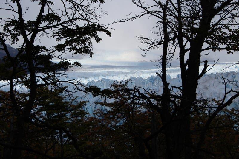 The glacier Perito Moreno. Imposing and beautiful the glacier Perito Moreno is a thick ice mass located in the department Lago Argentino of the province Santa stock images