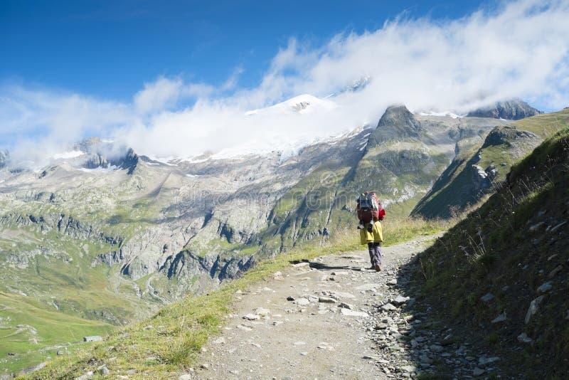 Glaciers de DES d'Aiguille image libre de droits