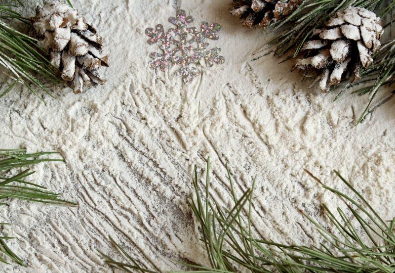 Glad jul och lyckligt nytt år Julgran och kottar i snön på en grå bakgrund för nytt års intelligensen för hälsa kort arkivfoton