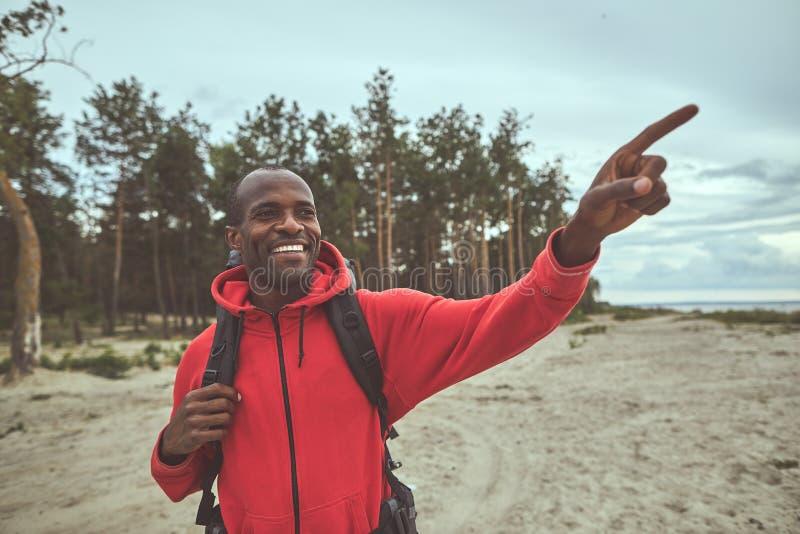Glad man som pekar rätt riktning från skogen royaltyfri bild