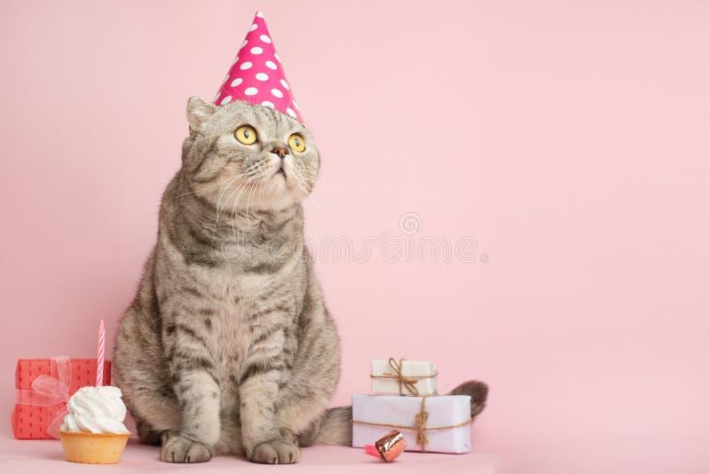 Glad pott, födelsedag Baner, årsdag eller ferie royaltyfria bilder