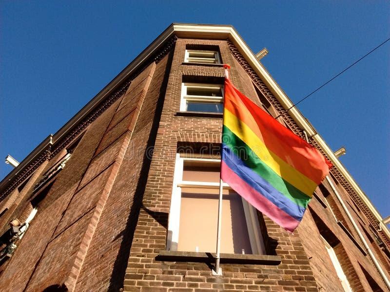 Glad regnbågeflagga royaltyfri foto