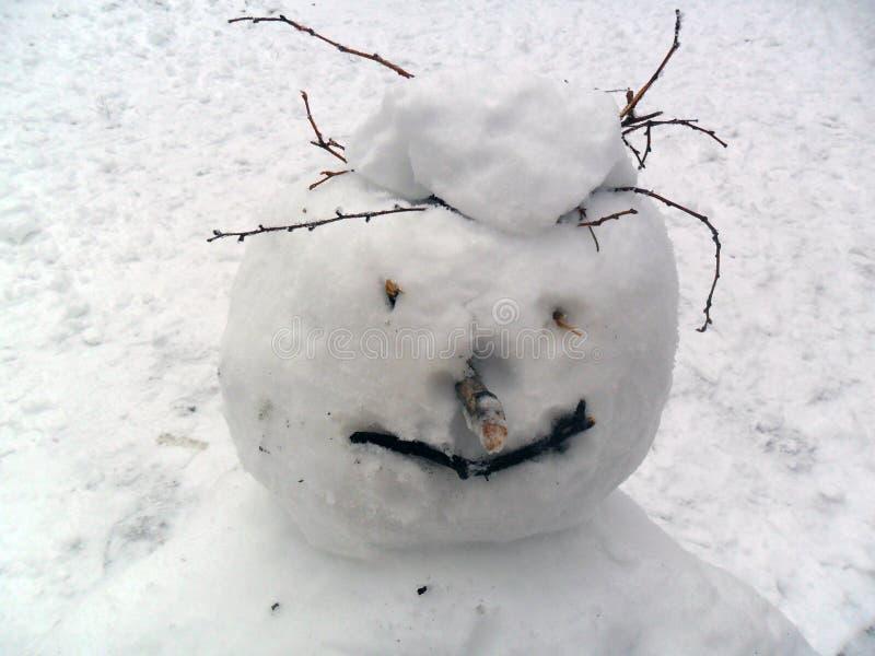 Glad snögubbehuvudnärbild fotografering för bildbyråer