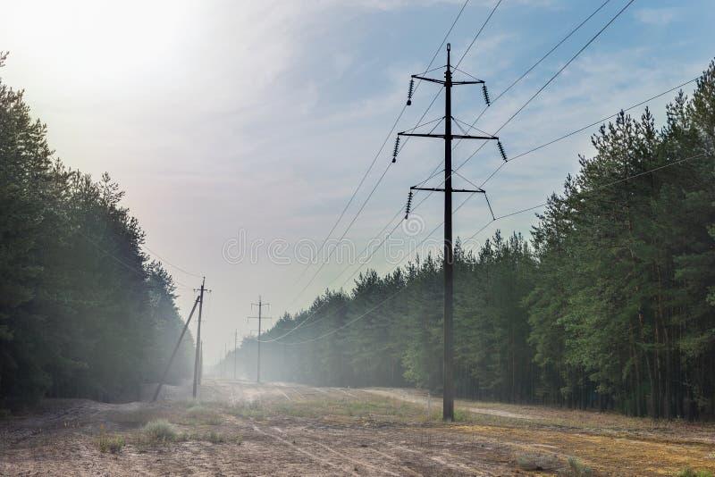 Glade леса с линией передачи энергии полосой отчуждения Провода электрической поставки в тумане на рано утром стоковые изображения