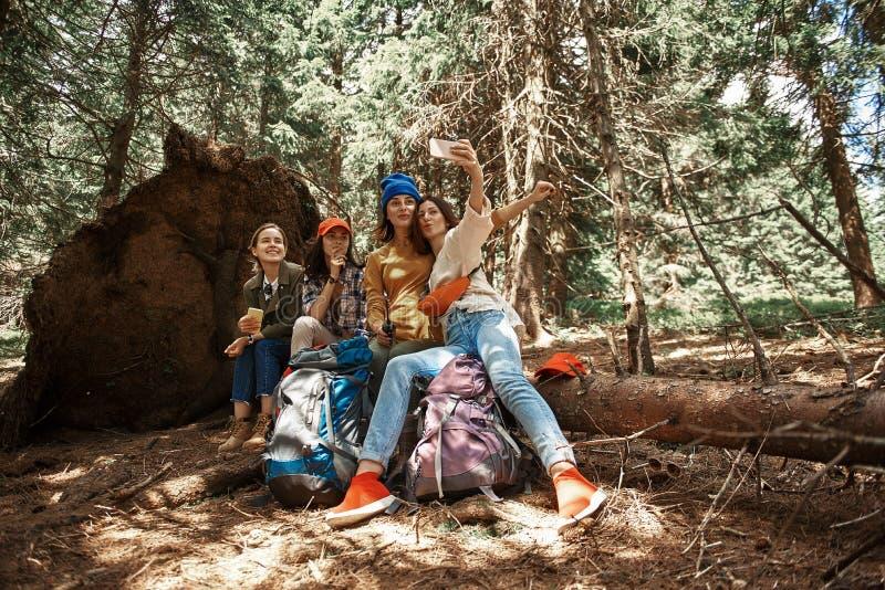 Glade damer har gyckel i skog arkivfoton