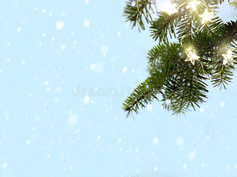 Glade julsnö- och granträdfilialer med ferieljus arkivbild