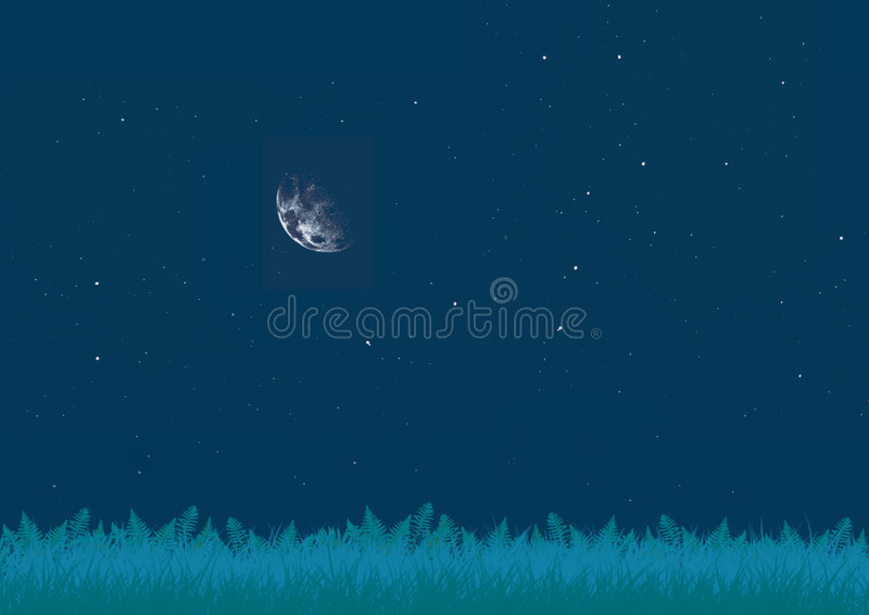 Download Glade At Night Stock Photography - Image: 5956372