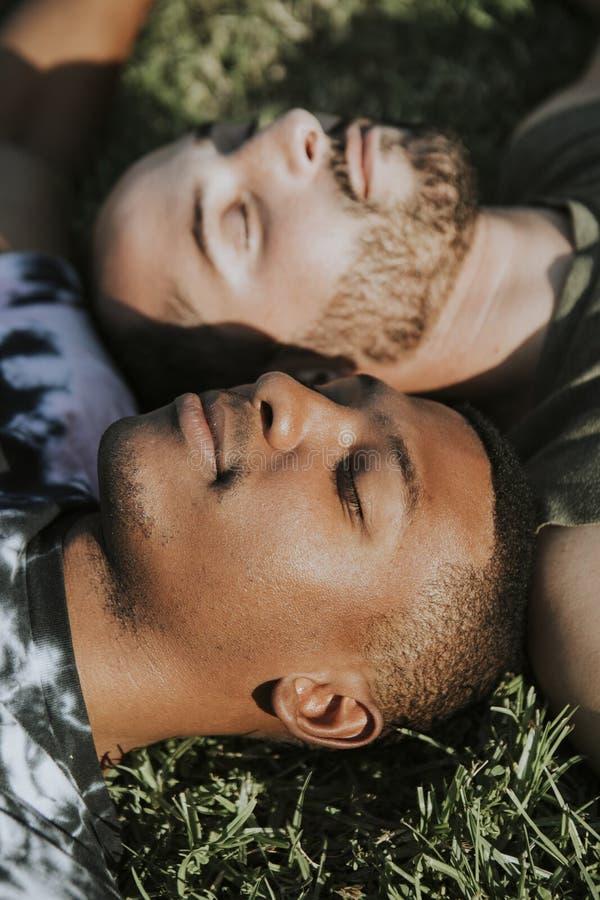 Glade par som kopplar av i gräset fotografering för bildbyråer