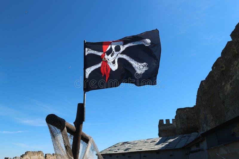 Glade roger piratkopierar flaggan i den blåa himlen royaltyfri fotografi