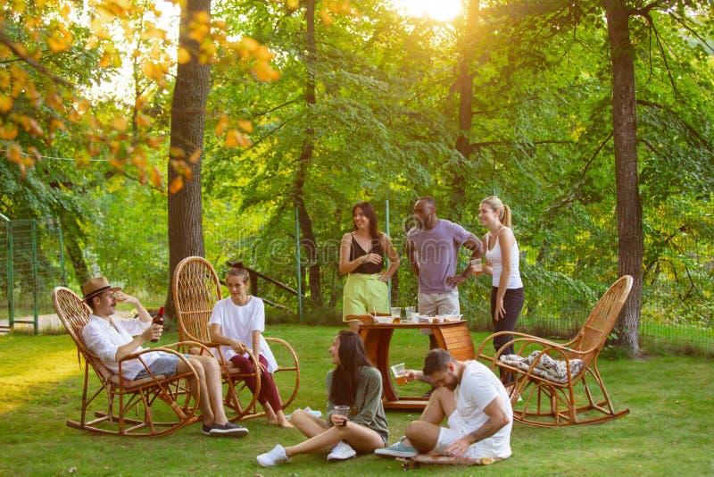Glade vänner som äter och dricker öl vid barbemiddagen på solnedgången royaltyfri fotografi